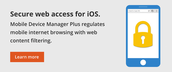 Secure web access for iOS.