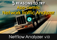 5 Reason to try App-centric Network Traffic Analyzer - Netflow Analyzer