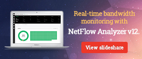 Real-time bandwidth monitoring with NetFlow Analyzer v12