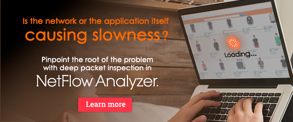 Improve user experience with packet analysis in NetFlow Analyzer.